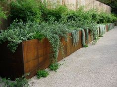 corten steel low retaining wall landscaping border cost - Google Search