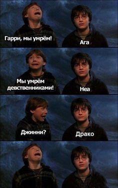 Harry Potter Mems, Harry Potter Tumblr, Harry Potter Books, Harry Potter World, Harry Potter Birthday, Harry Ptter, Harry Potter Funny Pictures, Albus Severus Potter, Hello Memes