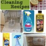 Top Ten Copycat Cleaning Products