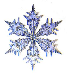 Image result for snowflake pictures