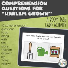 Comprehension Question BOOM CARDS for