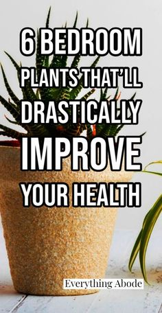 Flower Fence, Health And Wellness, Health Fitness, Garden Planter Boxes, Bedroom Plants, Homeopathic Remedies, Planting Flowers, Everything, Improve Yourself