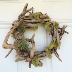 Driftwood air fern wreath