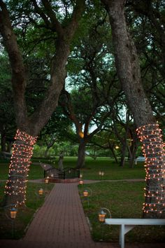 gorgeous way to wrap trees with regular christmas lights in lieu of overhead cafe lighting ($$$)