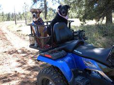 $278.95 Dusty Dogs ATV Dog Box