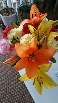 January 10, 2016-My lilies are opening.  Much needed color this time of year.