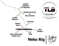 Neko Rig Diagram