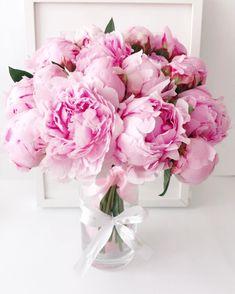 """The Prestige Roses España on Instagram: """"Peonias 🌸 un ramo de 30 #peonias 💗 #mantenemos nos horarios cumpliendo y las normas higiene y conducta marcadas por el gobierno…"""" Floral Wreath, Wreaths, Shower, Rose, Plants, Wedding, Instagram, Decor, Flowers"""