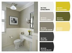 ColorSnap by Sherwin-Williams – ColorSnap by mgtoews