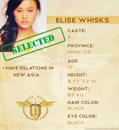 Elise Whisks - The Elite