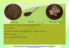Ramuan-Kesuburan-Pria-20 Recipe Cards, Islam, Beef, Recipes, Food, Meat, Meal, Rezepte, Essen