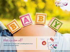 3 Things to Discuss with Your Partner about Family Cord Blood Banking