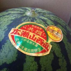西瓜 広瀬山西瓜 青森県  Water Melon  Hiroseyama Aomori