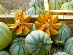 Provencal Melon