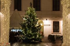 Christmas tree hidden in a tiny square in downtown Vienna, Austria Christmas Lights, Christmas Tree, Vienna Austria, Live For Yourself, Dreaming Of You, World, Holiday Decor, Home Decor, Christmas Fairy Lights