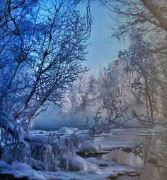 Winter wounderland...