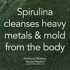 Spirulina cleanses heavy metals & mold from the body ~Medical Medium - Holistic Health Spirulina, Natural Medicine, Herbal Medicine, Natural Cures, Natural Health, Health And Nutrition, Health And Wellness, Health Tips, Nutrition Jobs