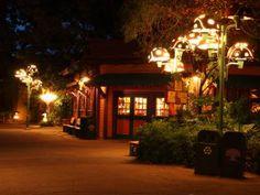 Disney's Animal Kingdom - After Dark