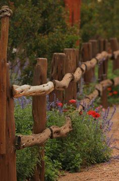 Weathered Fence