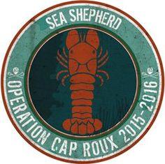 Sea Shepherd France lance l'Opération Cap Roux - Sea Shepherd FR