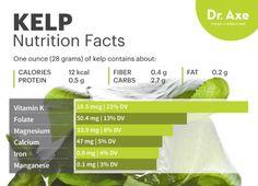 Kelp nutrition - Dr. Axe