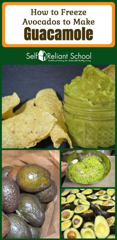 Step by step instructions for freezing and storing avocados. #beselfreliant via @sreliantschool