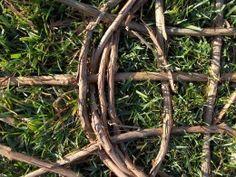 How to make a basket out of wild grapevine Flax Weaving, Willow Weaving, Weaving Art, Basket Weaving, Honeysuckle Vine, Twig Furniture, Basket Crafts, Nativity Crafts, Flower Farm