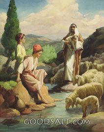Pastor y las ovejas