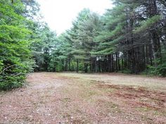 If your looking for a great building site here it is.  This level 4.5 acre lot has a great clearing already to kick start your building ideas.  It still has plenty of possibilities for rough cut pine right on site and a mix of soft and hardwoods scattered throughout to provide firewood or some great privacy for years to come.