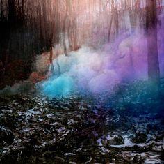 magical blue | blue, forest, magic, nature, purple - inspiring picture on Favim.com
