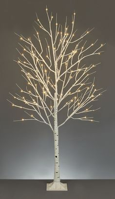 Buy your Linea M Birch Tree online now at House of Fraser. Why not Buy and Collect in-store?