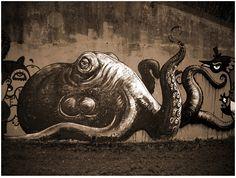 Octopus ~ street art