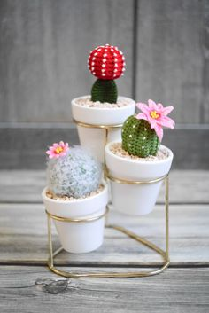 Baby Hat Knitting Pattern, Knitting Patterns, Crochet Doilies, Crochet Flowers, Crochet Toys, Knit Crochet, Cactus E Suculentas, Cactus Craft, Crochet Cactus