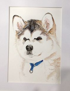 Lovely Malamute pup watercolour available at www.facebook.com/monscraftycreaturesuk