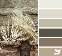 nature tones | design seeds | Bloglovin