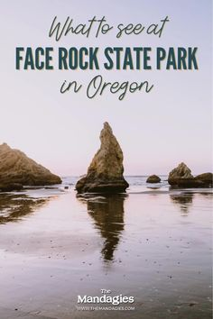 Face Rock State Park in Bandon Oregon is a hidden gem, filled with beautiful sea stacks, ocean strolls, and incredible sunsets. We're sharing exactly what you can see here, the best times to visit, and others things to do on the Oregon coast nearby! Save this for your next Oregon Coast road trip! #PNW #oregon #oregoncoast #bandonoregon #travel #travelblog #pacificnorthwest Bandon Oregon, Oregon Coast, Pacific Ocean, Pacific Northwest, North West, Sunsets, State Parks, Adventure Travel, Things To Do
