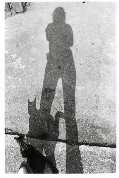 Facing sun, creating a shadow of photographer and her cat!