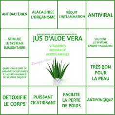 JUS D'ALOE VERA   Le Monde s'éveille