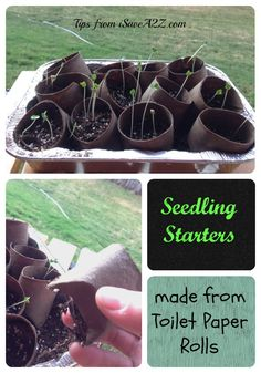 Recycle those toilet paper and paper towel rolls!!!  #Gardening #RaisedGardenBeds