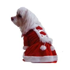Mrs Santa Claus Dress Dog Costume Pet Small Pet Supplies  sc 1 st  Pinterest & Santa Mrs Claus Dress Dog Pet Costume Size s New | doggie clothes ...