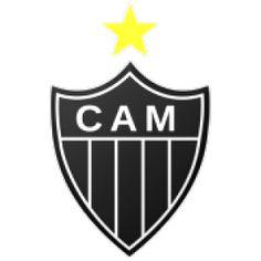 Histórico de posições - Atlético MG  (Ano a ano, todos os campeonatos, todos os resultados)  http://www.ricaperrone.com.br/historico-atletico-mg/