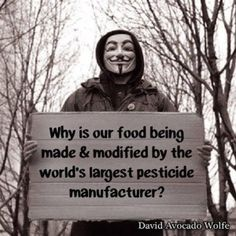 125 best Say NO to GMOs images on Pinterest | Food network ...  |Gmo Conspiracy Theories
