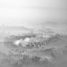 Play Misty for Me by Hengki Koentjoro, via Behance