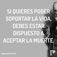 Las 26 Mejores Imágenes De Frases De Freud Frases De Freud