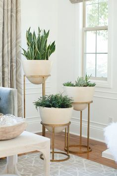 Bring the outside in These elegant planters are a great way to liven up a room corner entrance way or office Plants add warmth to a space and tiered planters beautifully. Living Room Plants, Small Living Rooms, Interior Design Living Room, Living Room Designs, Living Room Decor, Bedroom Plants, Modern Living, How To Decorate Small Living Room, Interior Livingroom