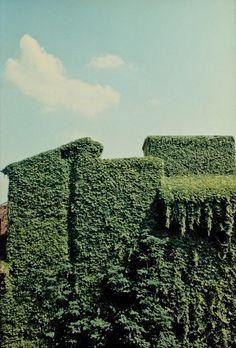 ferrara, 1981• luigi ghirri • for @Zoe James James James Lee