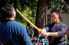 Monk fight! At the Missouri Botanical Garden's Japanese Festival