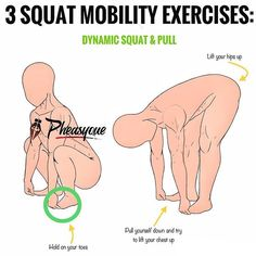 ⭕️ 3EASY SQUAT MOBILITY EXERCISES [squat warm up] ⭕️ - Both the idea and the caption come from the man himself James (@lustrengththerapy) whom I want to thank for this amazing post! - The squat requires an adequate amount of ankle, hip and thoracic spine mobility. - Mobilizing all three of these joints will help you achieve a greater depth along with minimizing the chances of any compensation. It can also make your squat more efficient and less prone to injury and promote longevity in the…