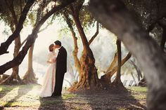 framed in by beautiful old trees??  the light too...not much better than that! like a dream
