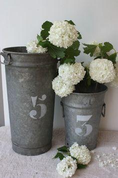 hydrangeas in zinc buckets